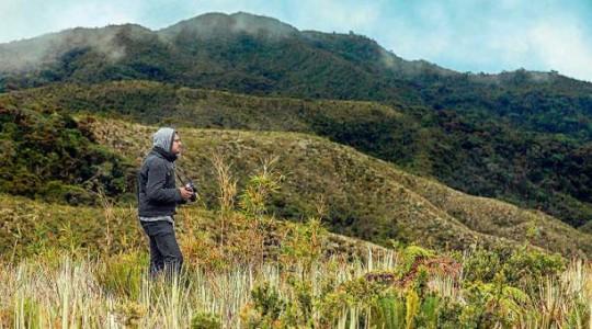 Las heliconias crecen en cualquier espacio y embellecen este paisaje. Foto: El Comercio