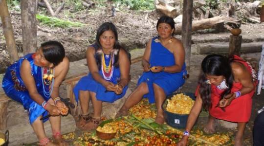 Las mujeres shuar mientras escogen lo mejor de la cosecha de chonta para preparar los alimentos. Foto: El Comercio