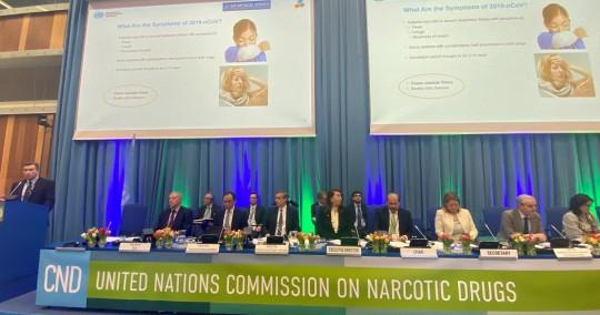 La ONU reconoce oficialmente las propiedades medicinales del cannabis. Foto: EFE