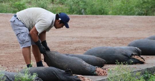 Arranca en Ecuador proyecto de matriz exportadora de gigante suizo del cacao / Foto: EFE