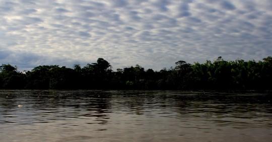 La Amazonía perdió 2,3 millones de hectáreas en 2020, su tercer peor registro / Foto: El Oriente