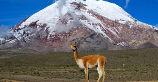 El Volcán Chimborazo, nevado importante de la Sierra del Ecuador, que llega hasta una elevación de 6263 msnm; constituye una fuente importante de agua. Fuente: El País, 2016