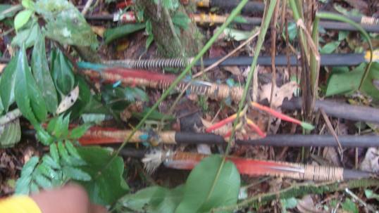 Estas son parte de la cultura de guerra que tienen las comunidades waorani. Foto: La Hora