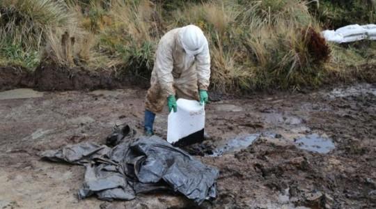 En un sector del Parque Nacional Cayambe Coca se detectó un derrame de petróleo, ocasionado por una tubería clandestina que transporta el crudo. Foto: EL COMERCIO
