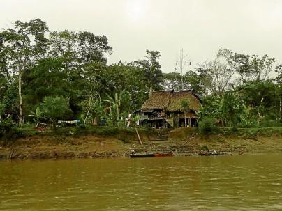 Parque Nacional Yasuní, en el oriente ecuatoriano  - Foto: El Diario