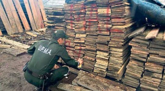 Los operativos de control de la Policía Nacional se realizan en puntos fijos y en recorridos por los bosques. Foto: El Comercio