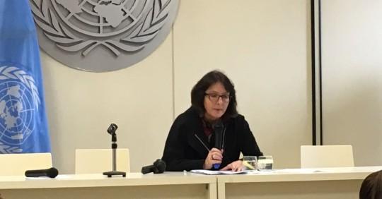 Expertos ONU critican a Ecuador por vetar el nuevo Código de Salud / Cortesía de la ONU