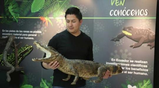 Siete museos de Quito exhibirán piezas de flora, fauna y arte del oriente ecuatoriano. Foto: El Comercio
