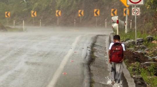 Juan Mandu camina por la vía Macas-Puyo rumbo a su casa. El niño debe ascender una pequeña montaña para ir a su casa ubicada en la comunidad Tarimiet, a ocho kilómetros. Foto: El Comercio