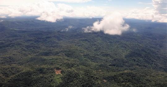 Plan Biorregional 2030 para proteger la Amazonía de Ecuador y Perú fue presentado / Foto: EFE