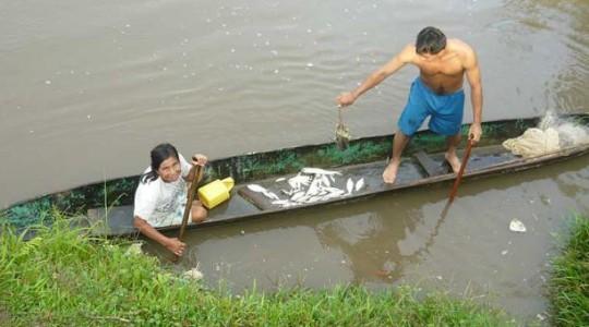 En las comunidades hay un consumo de 1 kilogramo al mes por persona de pescado. Foto: El Comercio