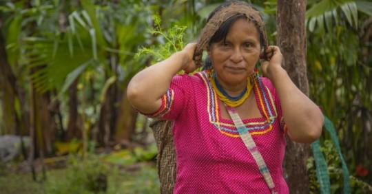"""""""Amazonía Sostenible al 2030"""", una Iniciativa para la Amazonía ecuatoriana / Cortesía del MAAE"""