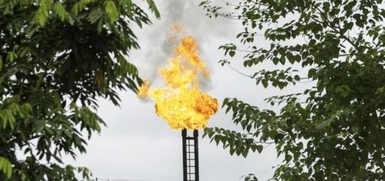 Petroamazonas EP produce alrededor de 425.000 barriles equivalentes de petróleo por día, con un costo total promedio de $ 17,89 por barril.  Foto: El Telégrafo