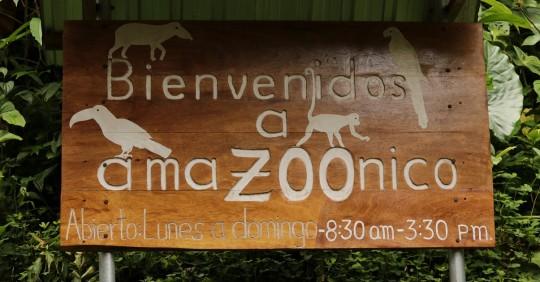 AmaZoonico, un centro de rescate animal en el corazón de la selva ecuatoriana / Foto: El Oriente