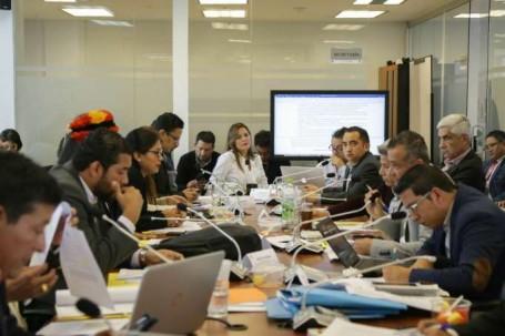 Comisión. Biodiversidad realizó el informe para que sea conocido por el Pleno. Foto: La Hora