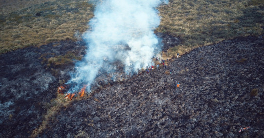 Incendio en el Parque Nacional Cayambe-Coca fue controlado / Foto: EFE