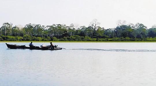 Un estudio publicado en la revista Science Advances muestra evidencias de que el océano ocupó la selva de América del Sur. Foto: El Comercio