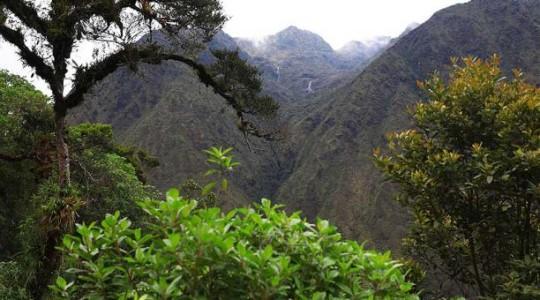 La población de la comunidad de San Andrés busca desarrollar el turismo alternativo en este sector. Foto:  El Comercio