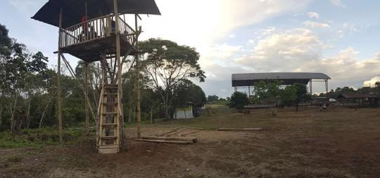 En la parroquia Sevilla Don Bosco, los estudiantes se turnaban hasta ahora para subir a esta casa en el árbol, ya que es el único lugar con señal de internet en esa zona selvática. Foto: Cortesía Municipio de Morona