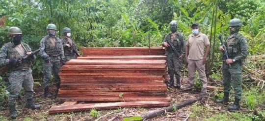 El Ejército incautó madera y armas en Sucumbíos / Foto: Cortesía de Ejército ecuatoriano