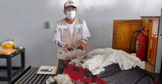 Hallan 185 bebés de tortugas gigantes en equipaje en aeropuerto de Galápagos / Foto: Cortesía del Ministerio de Medio Ambiente