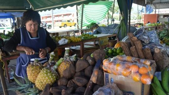 Frutas. Raquel León, saca la comida de la tagua, no hacen artesanías. Foto: Expreso
