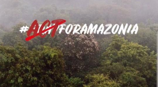 El presidente de Ecuador, Lenín Moreno, dijo que ofreció ayuda a Brasil para mitigar los incendios en la Amazonía. Foto: El Comercio