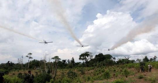 Colombia se prepara para retomar la aspersión aérea con glifosato / Foto cortesía Radio Caracol