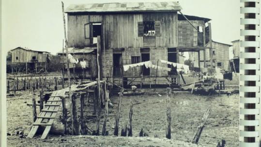 Una casa de caña en la provincia de El Oro después de la invasión peruana: la Dra. Monica Rankin dijo que la foto de los archivos de la Biblioteca Presidencial Franklin D. Roosevelt, no solo muestra la destrucción que dejó la guerra sino que la pobreza y el subdesarrollo siempre fueron un problema en la provincia.