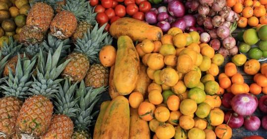 Buscan evitar que un millón de toneladas de alimentos se pierdan en Ecuador / Foto: Shutterstock