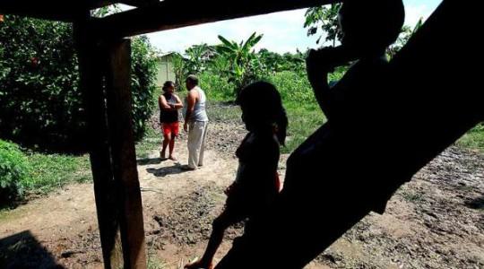 Familias enteras de la frontera norte viven de la siembra de hojas de coca. Foto: Julio Estrella / EL COMERCIO