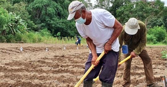 UE promueve práctica alimentaria sostenible a través de concurso en Ecuador  / Foto: Cortesía Ministerio de Agricultura