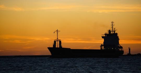 El COE confirma 5 casos de covid-19 en tripulantes de carguero africano / Foto: Shutterstock