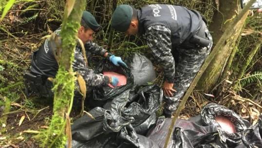 Droga decomisada por agentes de policía. Foto: Extra