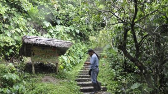 Ecuador está siempre en la lista de países más biodiversos del planeta. Foto: Expreso