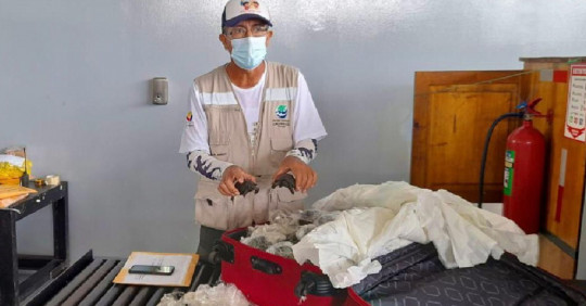 Policía fue condenado a 3 años de prisión por tráfico de tortugas de Galápagos / Foto: Cortesía Ministerio de Ambiente