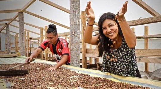 La técnica de secado, llamada 'honey', es una de las que estos emprendedores han perfeccionado. Foto: cortesía Witoca