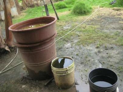 Nunca deje que el agua se estanque en llantas o en baldes, allí se instala el insecto transmisor. Foto: La Hora