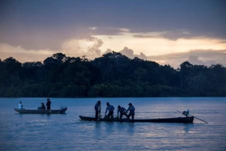 En Ecuador hay dos de las cuatro especies de delfines de río registradas en el sistema fluvial del Amazonas, el más grande del mundo y que abarca ocho países y una dependencia en América del Sur. Foto: El Universo