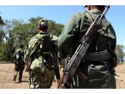Muchos hombres de las FARC no se acogieron al proceso de paz. Foto: La Hora