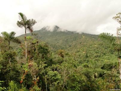 La Cordillera del Cóndor aún es una zona desconocida para los investigadores. Foto: La Hora
