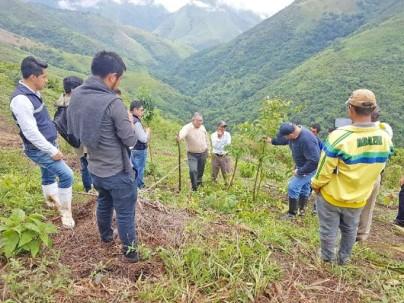 TEMÁTICA. Diversos conocimientos relacionados al cultivo de la guayusa se impartieron. Foto: La Hora