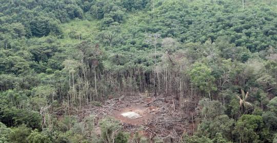Bombardeo en Sucumbíos fue definitivo para la derrota de las FARC / Foto EFE