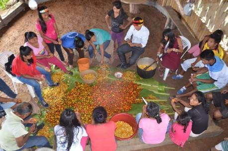 La comunidad, en especial las mujeres, participa en la clasificación y preparación de la chicha base de la chonta, que es una bebida tradicional en la región. Foto: El Universo