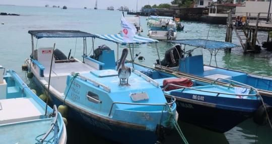 La reserva de Galápagos está en el foco de un polémico canje de deuda / Foto EFE