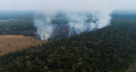 Cerca de 300 incendios registrados en la Amazonía desde inicios de 2021 / Foto: EFE