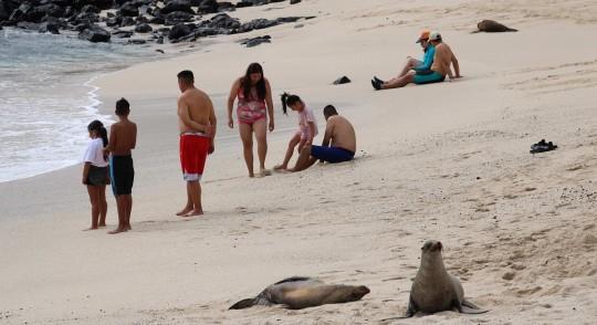 Galápagos, entre los embates de la pandemia y restricciones medioambientales / Foto: EFE