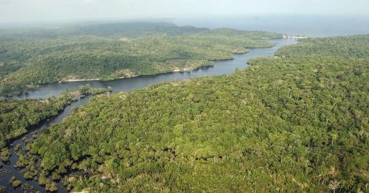 La panamazonía registró más de 1.300 conflictos por tierras en solo dos años / Foto: EFE