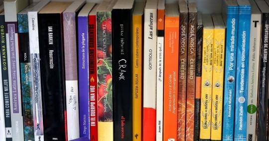 En el encuentro literario, que se inaugurará el 8 de diciembre, se hablará sobre los desafíos y las oportunidades de las ferias de libros en tiempos de pandemia. Foto: EFE