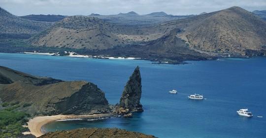 Autoridades sacarán de Galápagos unos 10.000 neumáticos usados / Foto: EFE